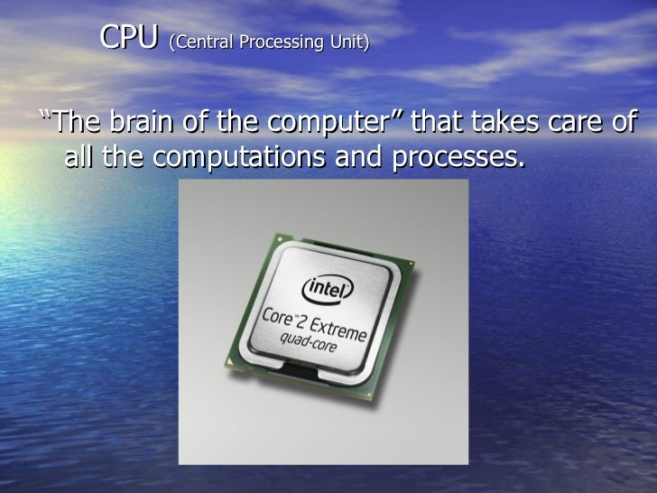 """<ul><li>""""The brain of the computer"""" that takes care of all the computations and processes. </li></ul>CPU  (Central Process..."""