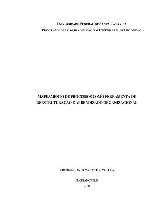 UNIVERSIDADE FEDERAL DE SANTA CATARINA PROGRAMA DE PÓS-GRADUAÇÃO EM ENGENHARIA DEPRODUÇÃO MAPEAMENTO DE PROCESSOS COMO FER...