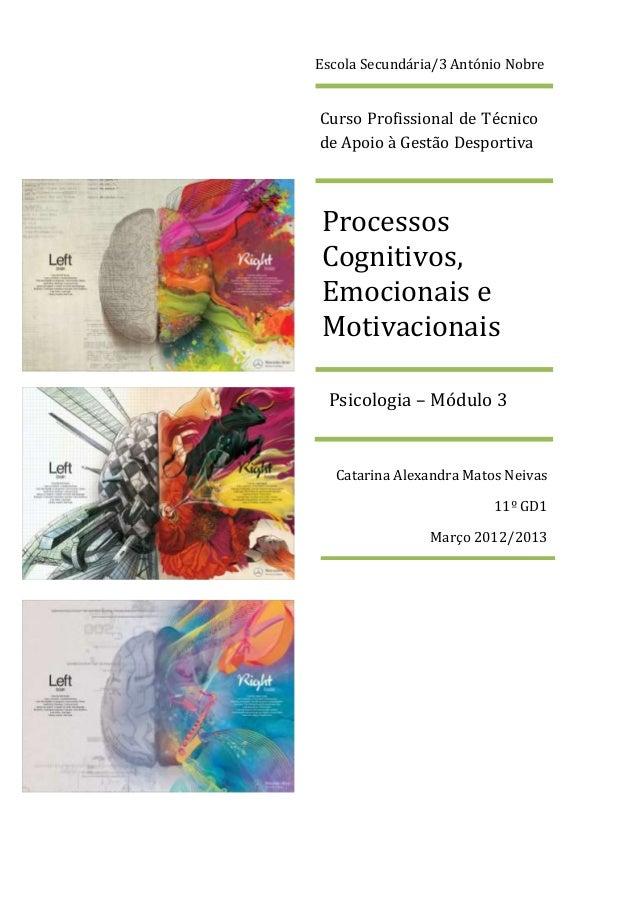 Inteligência Processos Cognitivos Emocionais E Motivacionais