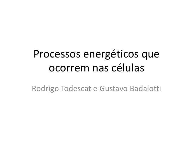 Processos energéticos que  ocorrem nas células  Rodrigo Todescat e Gustavo Badalotti