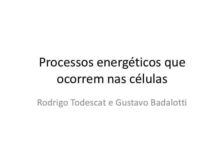 Processos energéticos que ocorrem nas células<br />Rodrigo Todescat e Gustavo Badalotti<br />