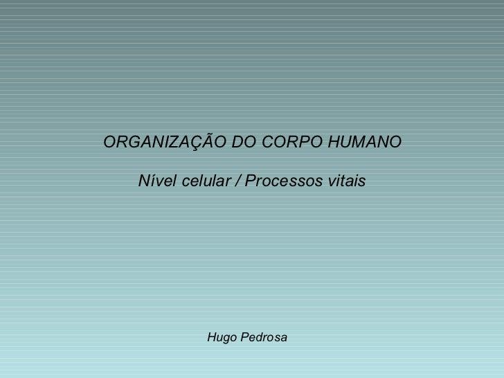 Nível celular / Processos vitais Hugo Pedrosa ORGANIZAÇÃO DO CORPO HUMANO