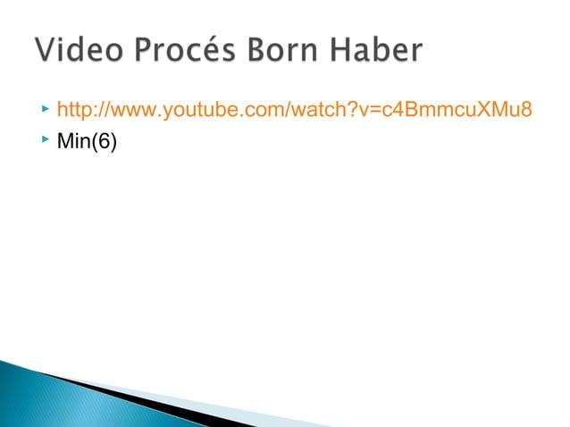 Procés born haber