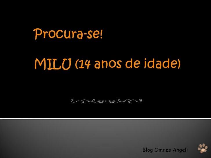 Blog Omnes Angeli