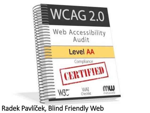 Radek Pavlíček, Blind Friendly Web