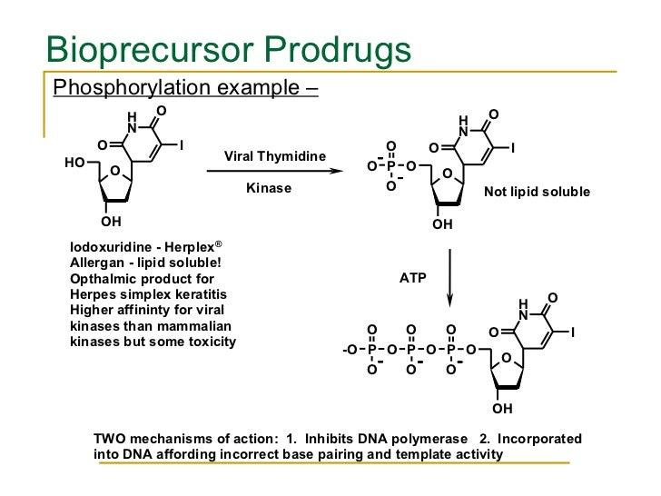 <ul><li>Phosphorylation example –   </li></ul>Bioprecursor Prodrugs
