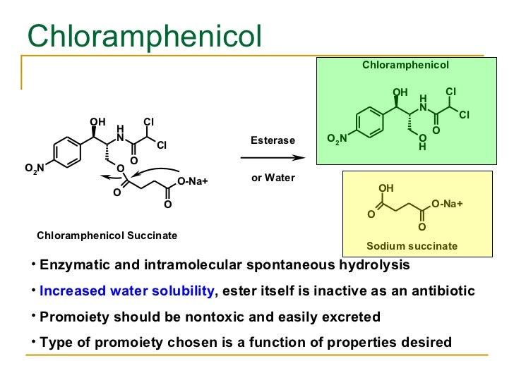Chloramphenicol  <ul><li>Enzymatic and intramolecular spontaneous hydrolysis </li></ul><ul><li>Increased water solubility ...