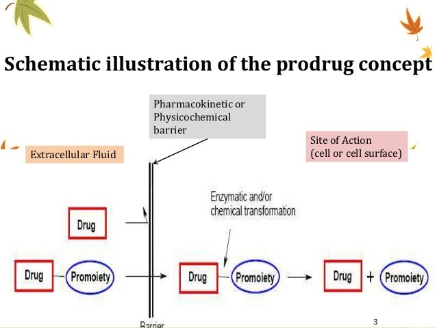 Schematic illustration of the prodrug concept Extracellular Fluid Site of Action (cell or cell surface) Pharmacokinetic or...