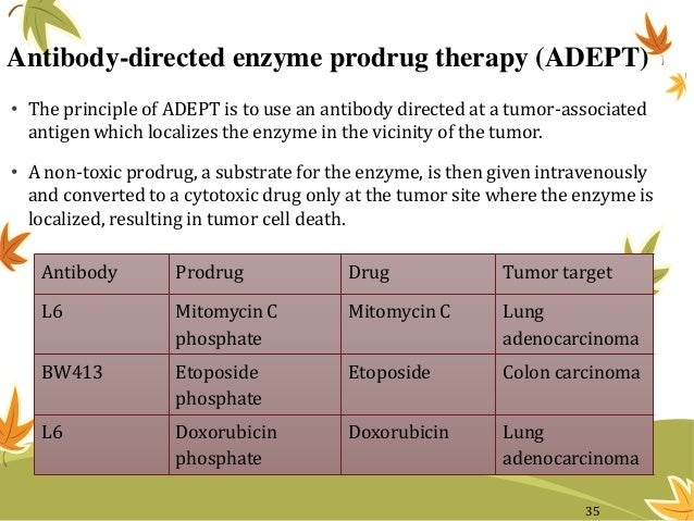 Antibody-directed enzyme prodrug therapy (ADEPT) • The principle of ADEPT is to use an antibody directed at a tumor-associ...