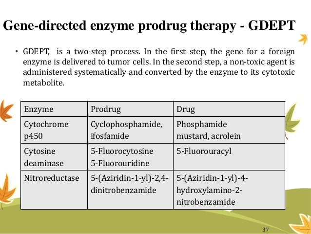 Gene-directed enzyme prodrug therapy - GDEPT • GDEPT, is a two-step process. In the first step, the gene for a foreign enz...