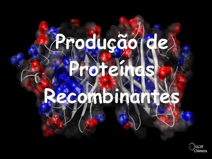 Produção de Proteínas Recombinantes