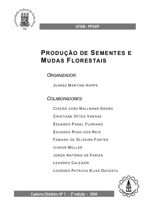 Caderno Didático Nº 1 - 2ª edição - 2004 UFSM - PPGEP PRODUÇÃO DE SEMENTES E MUDAS FLORESTAIS ORGANIZADOR: JU A R E Z MA R...