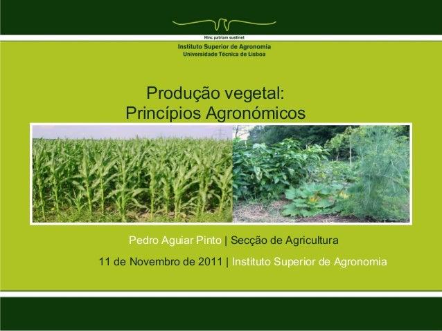 Produção vegetal:     Princípios Agronómicos     Pedro Aguiar Pinto | Secção de Agricultura11 de Novembro de 2011 | Instit...