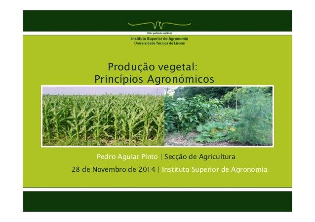 Produção vegetal:  Princípios Agronómicos  Pedro Aguiar Pinto | Secção de Agricultura  28 de Novembro de 2014 | Instituto ...