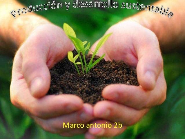 Marco antonio 2b