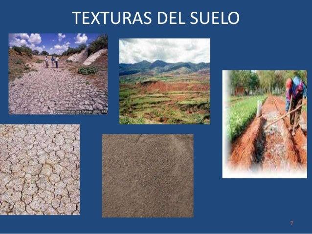 Producci n agroecologica for Perfil del suelo wikipedia