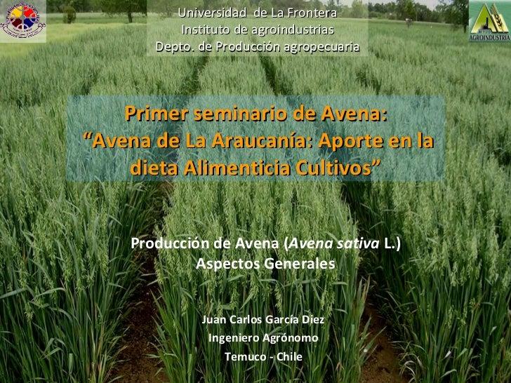 """Producción de Avena ( Avena sativa  L.) Aspectos Generales Primer seminario de Avena: """" Avena de La Araucanía: Aporte en l..."""