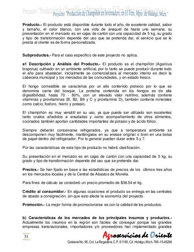Producción De Champiñon En Invernadero El Tren Mpio De Hidalgo Mi