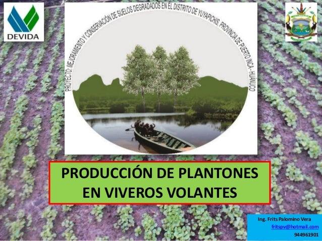 producci n de plantones forestales en viveros volantes
