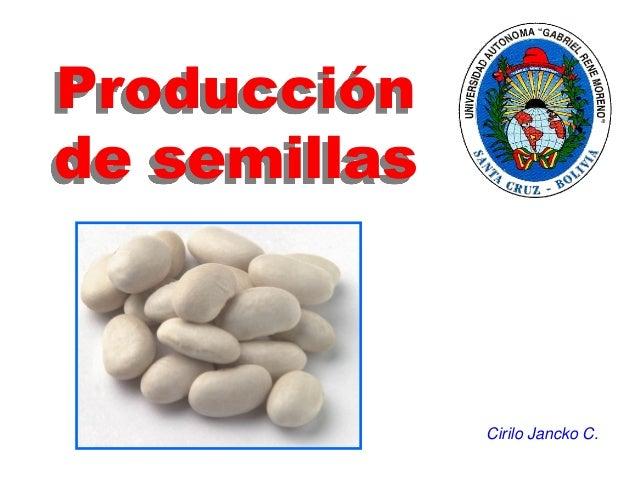 Producción de semillas Cirilo Jancko C.
