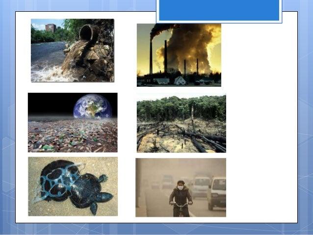 Aportaciones y beneficios de la informática al cuidado del ambiente. Que con la ayuda de ella puedes buscar información ac...