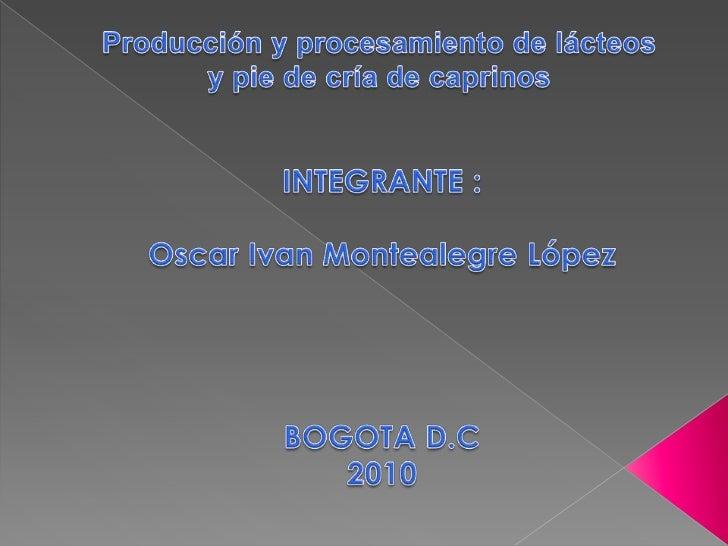 Producción y procesamiento de lácteos y pie de cría de caprinos<br />INTEGRANTE :<br />Oscar Ivan Montealegre López<br />B...