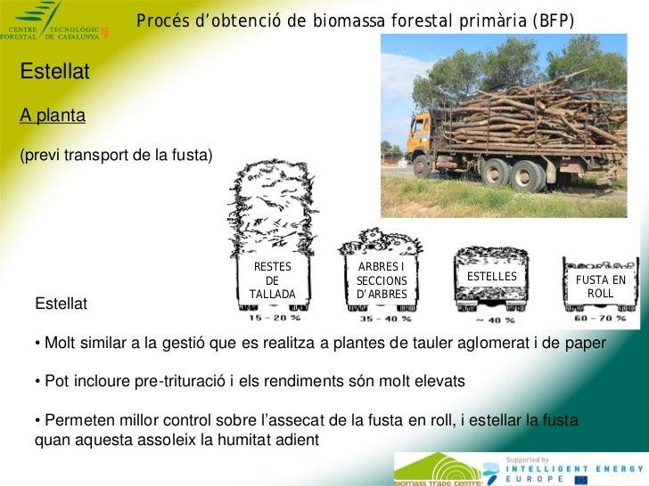 Procés d'obtenció de biomassa forestal primària (BFP)EstellatA planta(previ transport de la fusta)                        ...