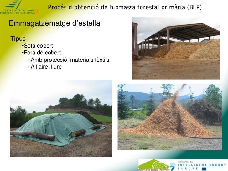 Procés d'obtenció de biomassa forestal primària (BFP)Emmagatzematge d'estellaTipus   •Sota cobert   •Fora de cobert     - ...