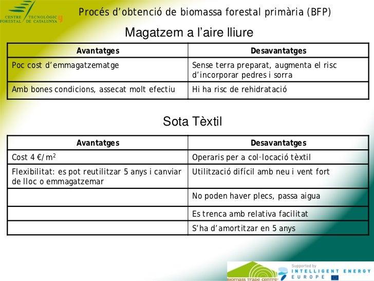 Procés d'obtenció de biomassa forestal primària (BFP)                                Magatzem a l'aire lliure             ...