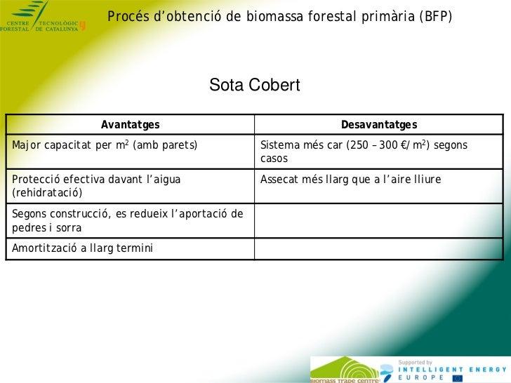 Procés d'obtenció de biomassa forestal primària (BFP)                                      Sota Cobert                 Ava...