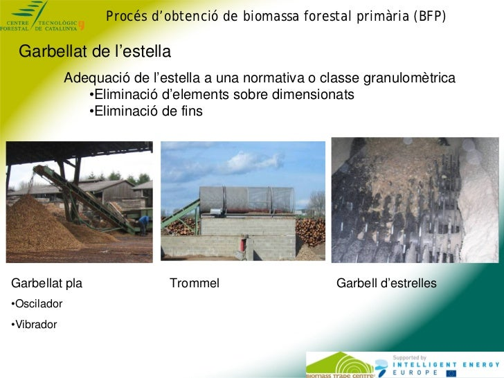 Procés d'obtenció de biomassa forestal primària (BFP) Garbellat de l'estella             Adequació de l'estella a una norm...