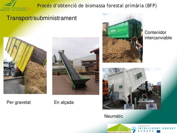 Procés d'obtenció de biomassa forestal primària (BFP)Transport/subministrament                                            ...