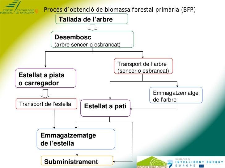 Procés d'obtenció de biomassa forestal primària (BFP)                Tallada de l'arbre              Desembosc            ...