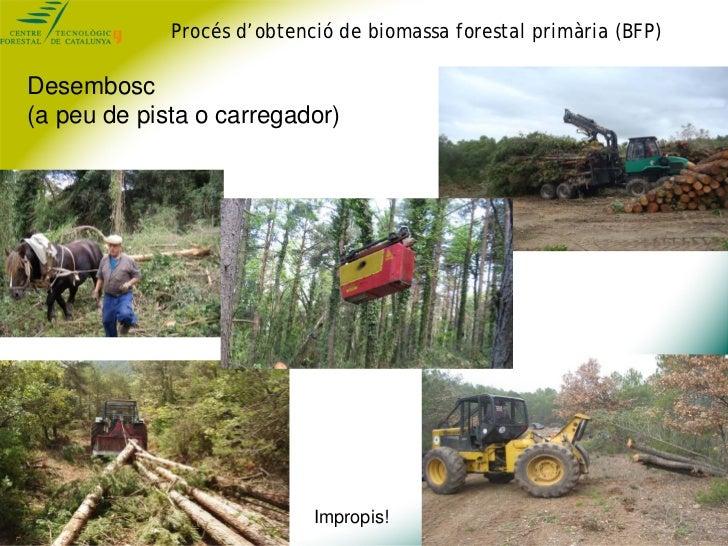 Procés d'obtenció de biomassa forestal primària (BFP)Desembosc(a peu de pista o carregador)                            Imp...
