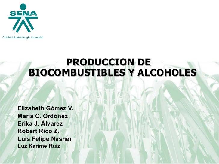 <ul><li>PRODUCCION DE BIOCOMBUSTIBLES Y ALCOHOLES </li></ul><ul><li>Elizabeth Gómez V. </li></ul><ul><li>María C. Ordóñez ...