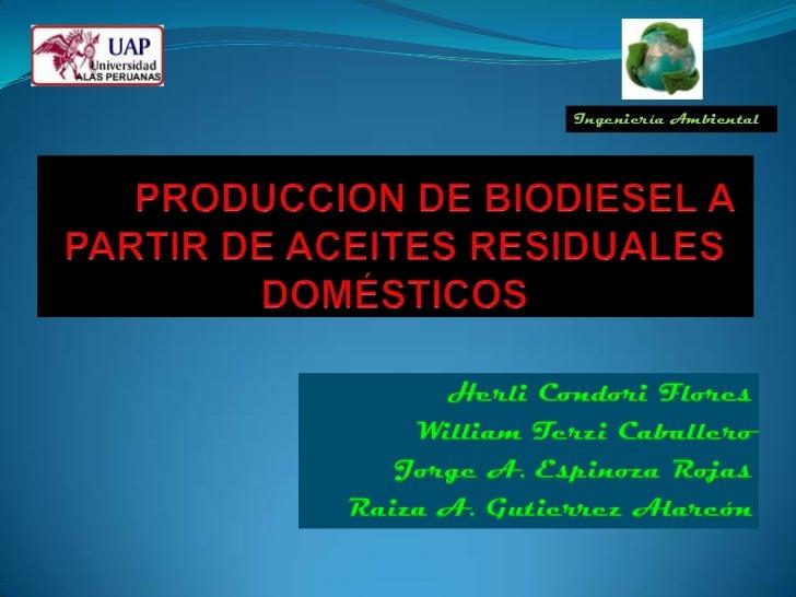 Ingeniería Ambiental      Herli Condori Flores    William Terzi Caballero   Jorge A. Espinoza RojasRaiza A. Gutierrez Alar...
