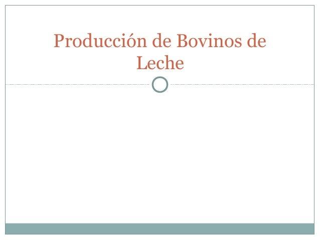 Producción de Bovinos de         Leche
