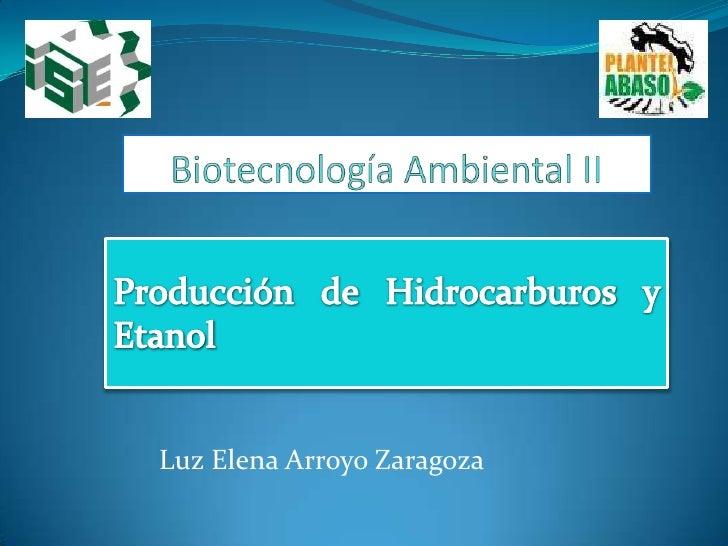 Biotecnología Ambiental II<br />Producción de Hidrocarburos y Etanol<br />Luz Elena Arroyo Zaragoza<br />