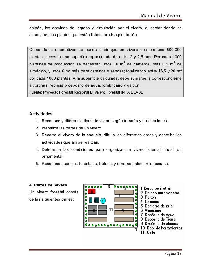 Produccion de plantas ornamentales for Organizacion de un vivero