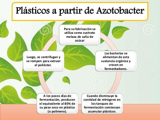 Produccion de plasticos biodegradables for Como criar cachamas en tanques plasticos