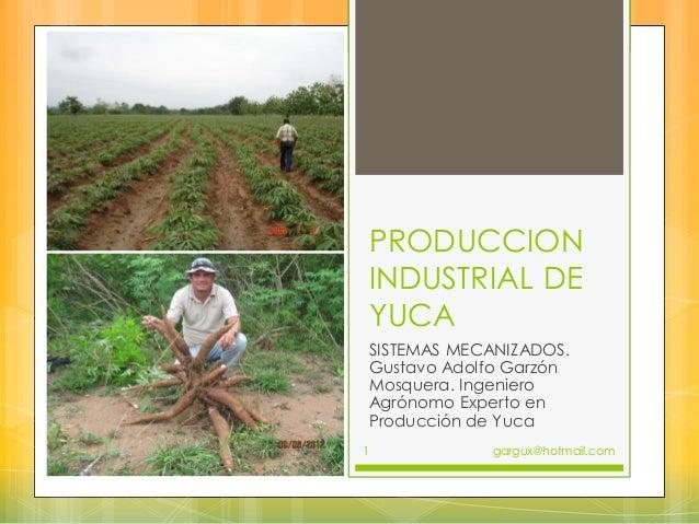 PRODUCCION INDUSTRIAL DE YUCA SISTEMAS MECANIZADOS. Gustavo Adolfo Garzón Mosquera. Ingeniero Agrónomo Experto en Producci...