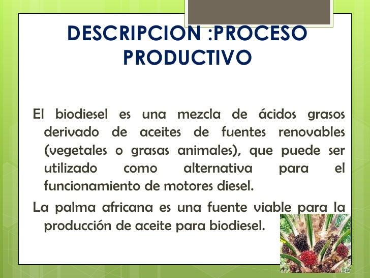 Produccion mas limpia palma africana for Descripcion del proceso de produccion