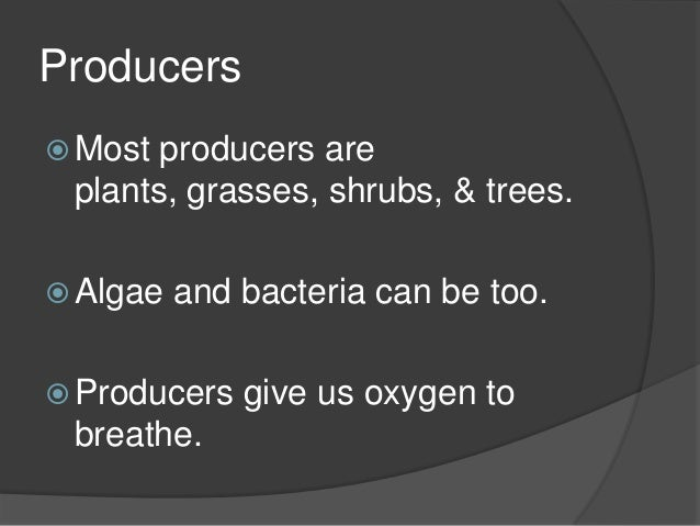 a desscription of photosynthesis a process in which producers and some bacteria makes the food they  Quizlet provides quiz environmental science ecosystems work activities and some bacteria use sunl organism that makes its own food, usually by photosynthesis.