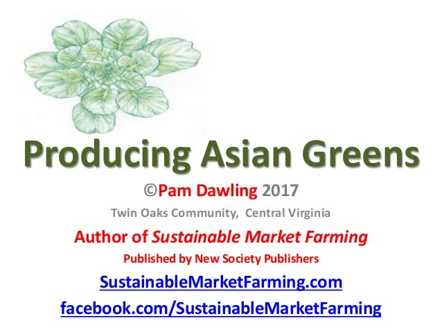 Producing Asian Greens ©Pam Dawling 2017 Twin Oaks Community, Central Virginia Author of Sustainable Market Farming Publis...