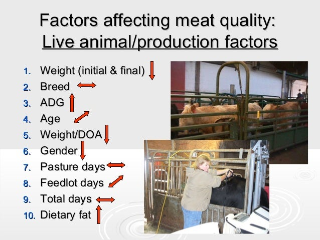 Understanding meats and game ppt download.