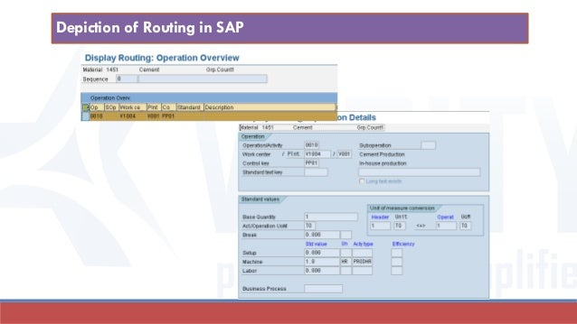 Depiction of Routing in SAP