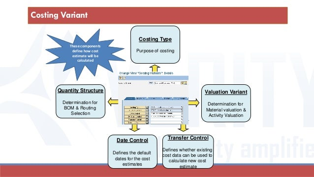 Valuation Variant Determination for Material valuation & Activity Valuation Costing Type Purpose of costing Quantity Struc...