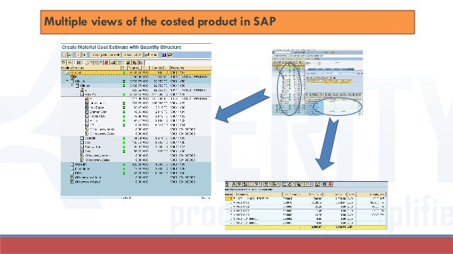 Multiple views of the costed product in SAP