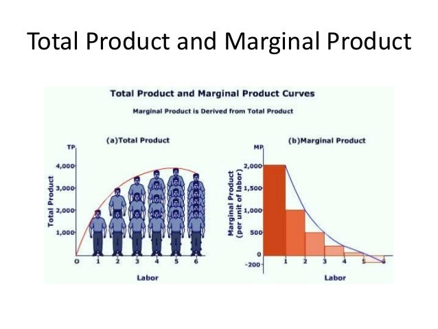 Total Product and Marginal Product