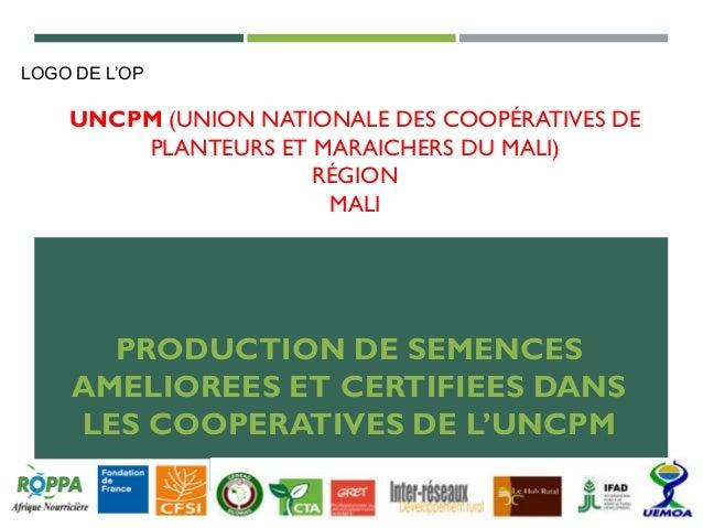 UNCPM (UNION NATIONALE DES COOPÉRATIVES DE PLANTEURS ET MARAICHERS DU MALI) RÉGION MALI PRODUCTION DE SEMENCES AMELIOREES ...